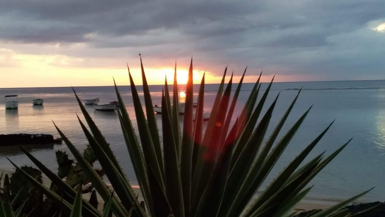 Coucher de soleil 1 - Moabi