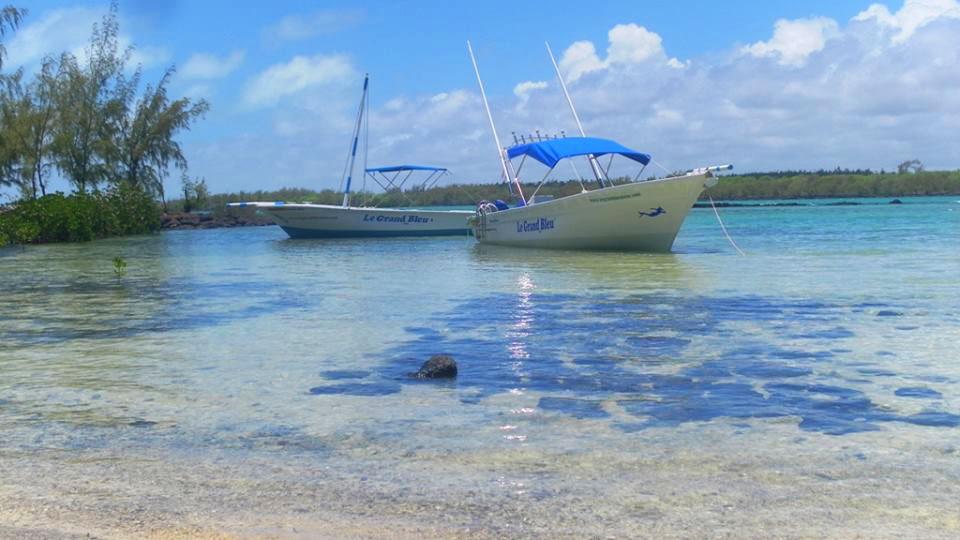 Ilot Bernache boat trip