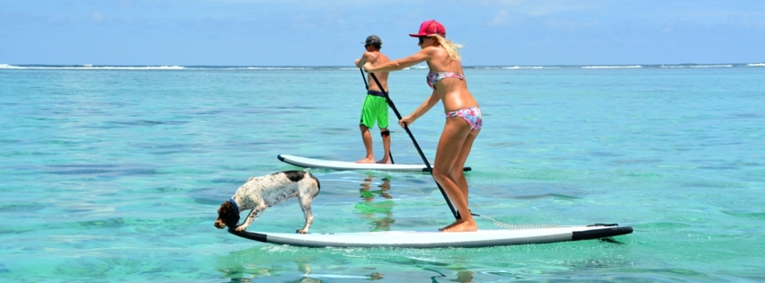 Stand Up Paddle Board and Kayak